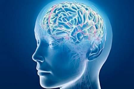 Cervellotatto vista