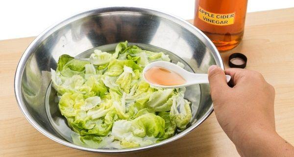 aceto di mele insalata